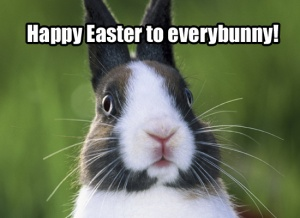 funny-easter-bunny-pictures-3
